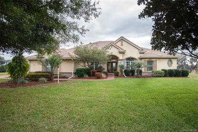 Hernando Single Family Home For Sale: 456 W Fenway Drive