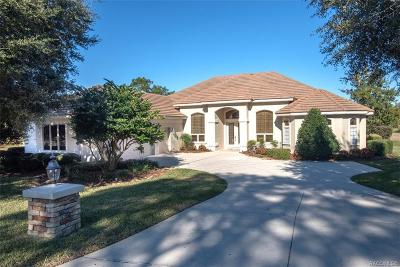 Lecanto FL Single Family Home For Sale: $739,000