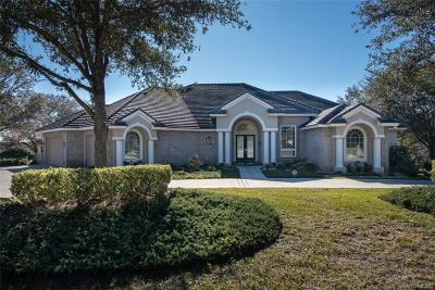 Lecanto FL Single Family Home For Sale: $960,000
