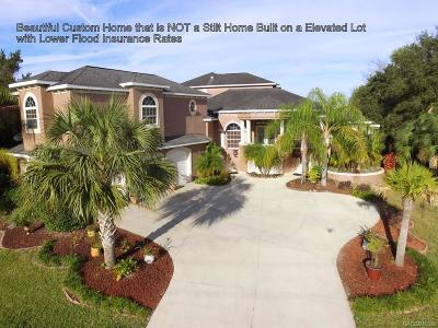Crystal River  Single Family Home For Sale: 11537 W Dixie Shores Drive
