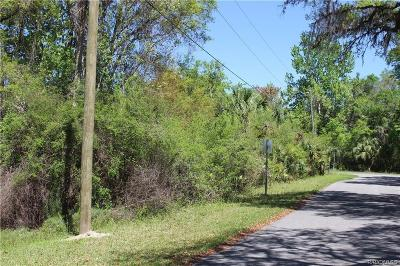 Lecanto Residential Lots & Land For Sale: 5408 S Red Wing Avenue