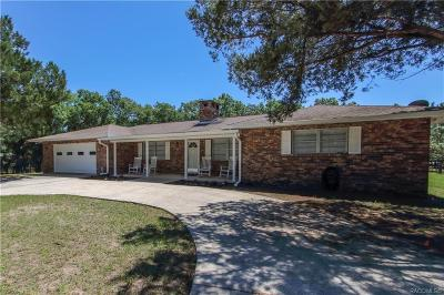 Floral City Single Family Home For Sale: 11441 S Hibbard Path