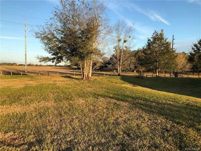 Lecanto Residential Lots & Land For Sale: 337 N Big Oaks Point