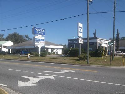 Citrus County Commercial For Sale: 425 S Croft Avenue