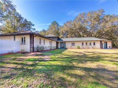 Dunnellon Single Family Home For Sale: 11234 SW 131st Terrace