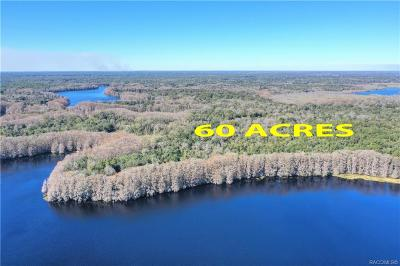 Floral City Residential Lots & Land For Sale: 10080 E Gobbler Drive