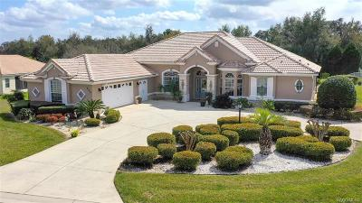 Hernando Single Family Home For Sale: 480 W Mickey Mantle Path