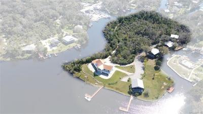 Homosassa Single Family Home For Sale: 5650 S Sea Otter Path