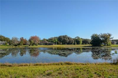 Citrus County Residential Lots & Land For Sale: 9520 E Baymeadows Drive