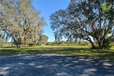 Citrus County Residential Lots & Land For Sale: 9893 E Tryon Court