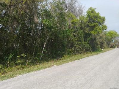 Inverness Residential Lots & Land For Sale: 1167 N Point Lonesome Road