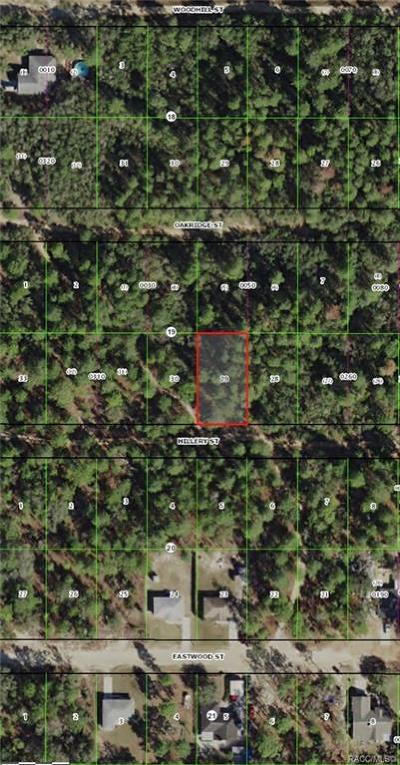 Inverness Residential Lots & Land For Sale: 2902 Hillery Street