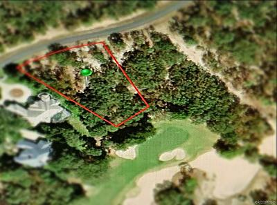 Black Diamond Ranch Residential Lots & Land For Sale: 3937 W Shadow Creek Loop
