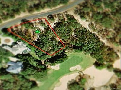 Lecanto Residential Lots & Land For Sale: 3937 W Shadow Creek Loop