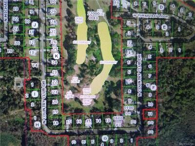 Crystal River Residential Lots & Land For Sale: 175 N Country Club Drive
