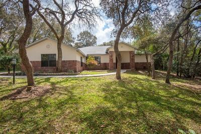 Hernando Single Family Home For Sale: 74 W Chase Street