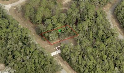 Citrus Springs Residential Lots & Land For Sale: 8987 N Spikes Way
