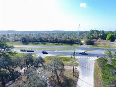 Lecanto Residential Lots & Land For Sale: 25 E Gulf To Lake Highway