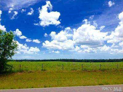 Homosassa Residential Lots & Land For Sale: 1820 W Oak Valley Court