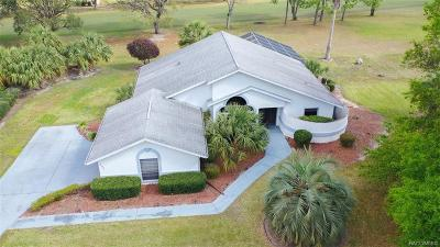 Hernando Single Family Home For Sale: 751 E Falconry Court