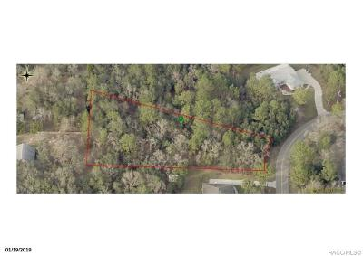 Lecanto Residential Lots & Land For Sale: 904 N Seton Avenue