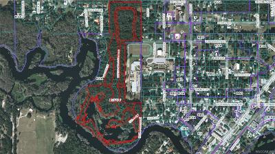 Dunnellon Residential Lots & Land For Sale: 0000