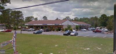 Citrus Springs Commercial For Sale: 750 & 780 W Hampshire Boulevard