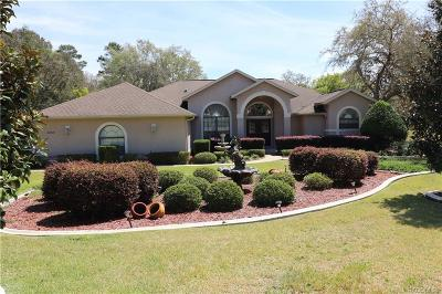 Hernando Single Family Home For Sale: 3889 N Indianriver Drive
