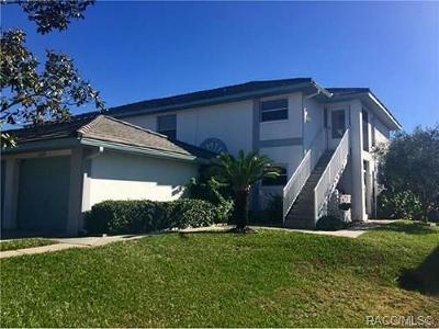 Citrus County Rental For Rent: 11280 W Cove Harbor Drive