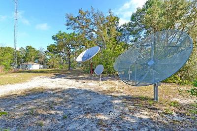 Lecanto Commercial For Sale: 1450 N Knoll Road