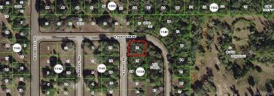 Citrus Springs Residential Lots & Land For Sale: 7947 N Cedro Road