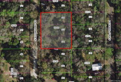 Citrus County Residential Lots & Land For Sale: 5069 S Mooreland Point