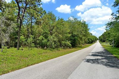 Hernando Residential Lots & Land For Sale: 861 W Olympia Street