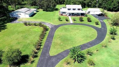 Lecanto FL Single Family Home For Sale: $650,000