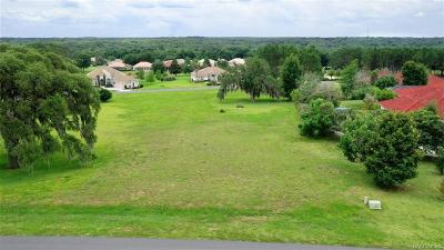 Hernando Residential Lots & Land For Sale: 514 W Fenway Drive