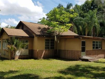 Floral City Single Family Home For Sale: 8951 E Orange Avenue
