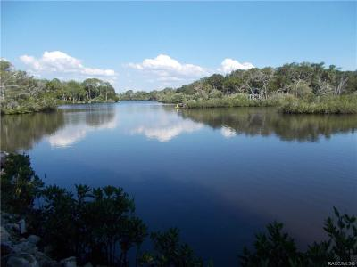 Crystal River Residential Lots & Land For Sale: 14710/14690 W Black Creek Drive