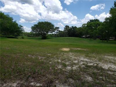 Black Diamond Ranch Residential Lots & Land For Sale: 3541 N Pine Valley Loop
