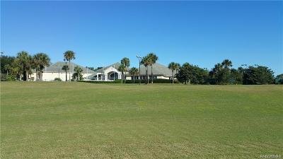 Hernando Residential Lots & Land For Sale: 203 W Mickey Mantle Path