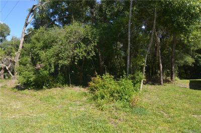 Inverness Residential Lots & Land For Sale: 3525 E Cindy Lane