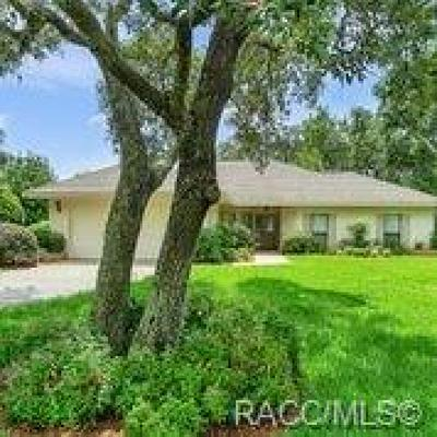 Lecanto Single Family Home For Sale: 3284 W Wildwood Bay Court