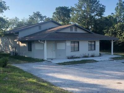 Lecanto Commercial For Sale: 5175-5177 W Homosassa Trail