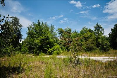 Hernando Residential Lots & Land For Sale: 3941 E Peggy Street