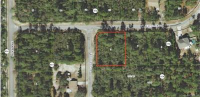 Residential Lots & Land For Sale: 4208 W Vicksburg Drive