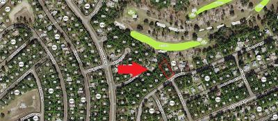 Citrus Springs Residential Lots & Land For Sale: 2457 W Dolphin Drive