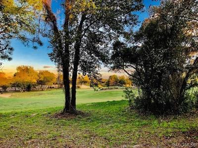 Black Diamond Ranch Residential Lots & Land For Sale: 2635 N Prestwick Way