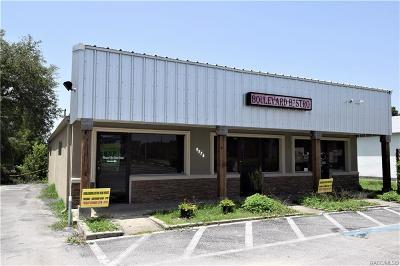 Citrus County Commercial For Sale: 9576 N Citrus Springs Boulevard