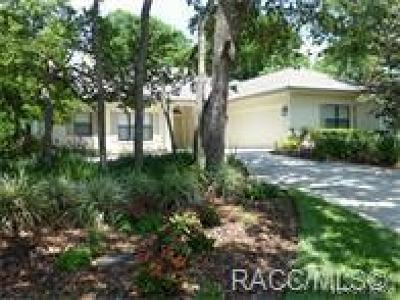 Lecanto Single Family Home For Sale: 3311 W Wildwood Bay Court