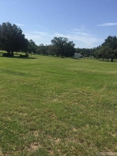 Hernando Residential Lots & Land For Sale: 204 E Falconry Court