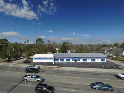 Crystal River Commercial For Sale: 309 NW Us 19 Highway